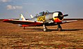 South African Air Force Harvard No. 7024.JPG