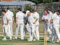Southwater CC v. Chichester Priory Park CC at Southwater, West Sussex, England 017.jpg