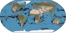 Sperm whale world distribution.jpg