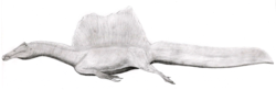 Spinosaurus LM.png