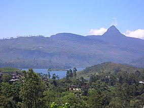mountain forests with Adam's peak in the background