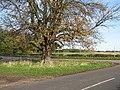 Stapleford Junction - geograph.org.uk - 77606.jpg