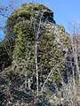 Stella-castello-torre.jpg