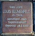 StolpersteinMagdeburgBlumenfeldLouis.jpg