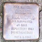 Stolperstein Charlotte Rosenheimer Offenburg.jpg
