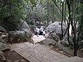 Stone Forest pathway 05.JPG