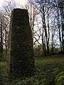 Stone pillar - geograph.org.uk - 1589940.jpg