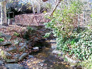 Strawberry Creek - Image: Strawberry Creek 13
