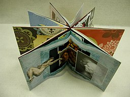 Student Book Art (1472686415)