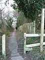Studland , Church Path - geograph.org.uk - 1712565.jpg