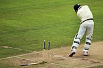 Stumped Josh Hazlewood - The Ashes Trent Bridge (19802685544).jpg