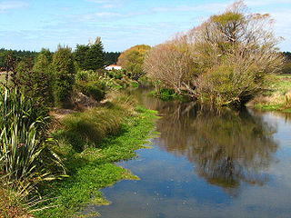 river in New Zealand