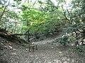 Suemori castle hori1.JPG