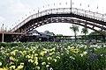 Suigo Itako Ayame Garden 07.jpg