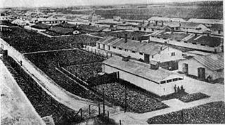 Thalerhof internment camp