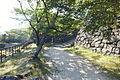 Sumoto Castle in 2013-9-29 No,5.JPG
