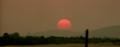 Sunrise.56.png