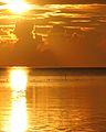Sunrise 24 03 2007 (483857142).jpg