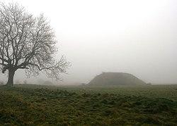 Sutton Hoo burial ground 5.jpg