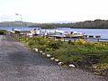 Swan Island, Garadice Lough - geograph.org.uk - 1309575.jpg