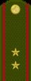Tajikistan-Army-OR-9a.png