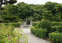 Takayaj7.jpg