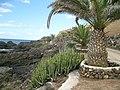 """Teneriffa - Süd - La Galletas - Küstenwanderung nach Westen zum Leuchtturm von Punta Rasca -""""Promenade an Bananenplantage öffentlich"""" - panoramio.jpg"""