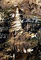 Teufelshöhle, Baum im Riesensaal.jpg