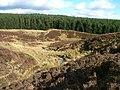 The Gair Burn - geograph.org.uk - 1198274.jpg