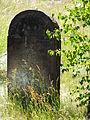 The Jewish Culture Trail - Kirkut in Kierkow - Gmina Zarki Powiat Myszkowski 7.JPG