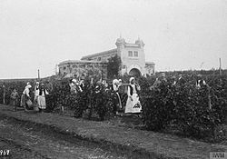 The Occupation of Romania by the Central Powers, 1916-1918 Q87278.jpg