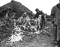 The chaff which a Japanese plane dropped.jpg