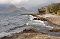 The shore at Elgol - geograph.org.uk - 1420435.jpg