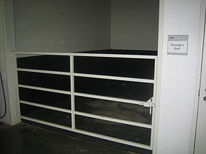Thunder (mascot) - Thunder's stall on game days is near the visiting team's locker room at Sports Authority Field at Mile High.