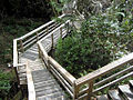 Tonquin Park (6886313876).jpg