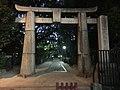 Torii on east side of Hakozaki Shrine at night.jpg