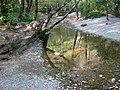 Torrente rosandra....in secca - panoramio.jpg