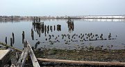 Tottenville ferry pilings jeh