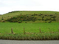 Tottington Mount - geograph.org.uk - 68924.jpg