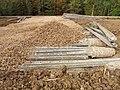 Toucy-FR-89-Bois-Terrier-en terrassement-06.jpg