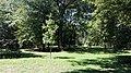 Town Park in Głogówek, 2019.08.09 (04).jpg