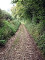 Track leading to Lower Alham Farm - geograph.org.uk - 585332.jpg