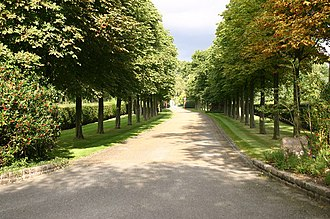 The lined drive to John's home in Woodside in Old Windsor, Berkshire Tree lined drive to Woodside - geograph.org.uk - 555506.jpg