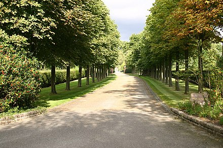 The lined drive to Elton John's home in Woodside in Old Windsor, Berkshire Tree lined drive to Woodside - geograph.org.uk - 555506.jpg
