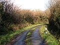 Treven Lane - geograph.org.uk - 719926.jpg