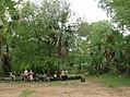 UNESCO Niokolo-Koba National Park Senegal (3686571881).jpg
