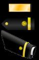 USA - NOAA - O1 insignia.png