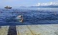USS Cleveland swim call 110520-N-KB563-089.jpg