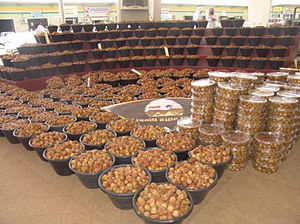 Unaizah - A section in Unaizah International Dates Festival 08