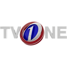 TVOne Pakistan - Wikipedia